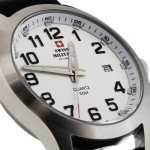 Swiss Military by Chrono SM34024.08 (attach5 17883)